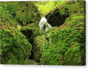 Mount Toby Roaring Falls Ravine Canvas Print by John Burk