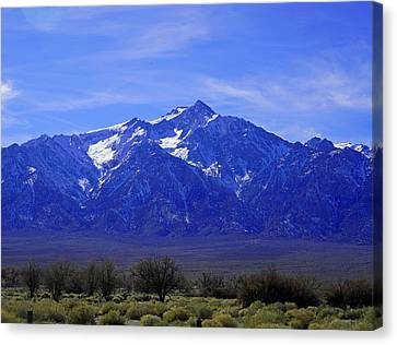 Mount Williamson Canvas Print by Dale Matson