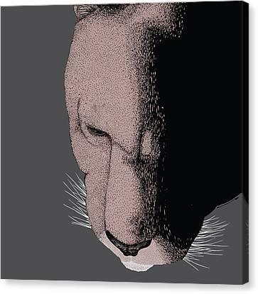 Mountain Lion Canvas Print by Karl Addison