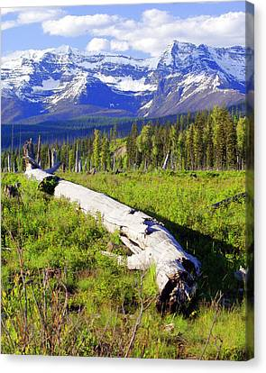 Mountain Splendor Canvas Print by Marty Koch