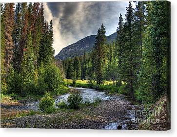 Mountain Stream 4 Canvas Print by Pete Hellmann