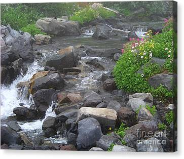 Mountain Stream Canvas Print by Charles Robinson