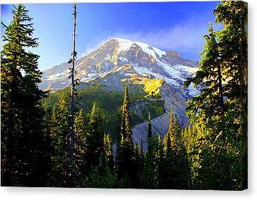 Mountain Sunset Canvas Print by Marty Koch