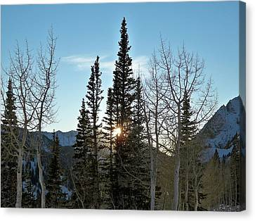Mountain Sunset Canvas Print by Michael Cuozzo