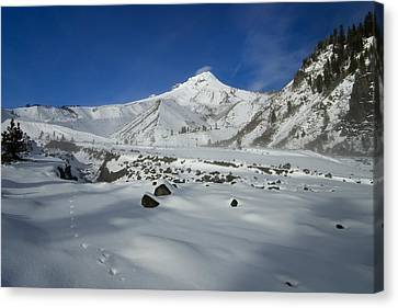 Mountain Tracks Canvas Print by Mike  Dawson