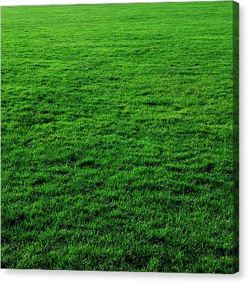 Mow The Lawn Canvas Print by Cynthia Decker