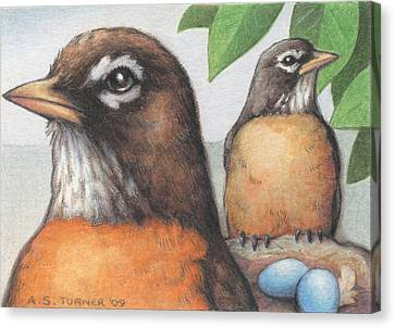 Mr And Mrs Robin Are Expecting Canvas Print by Amy S Turner