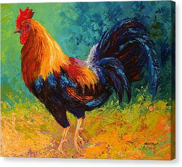 Mr Big - Rooster Canvas Print by Marion Rose