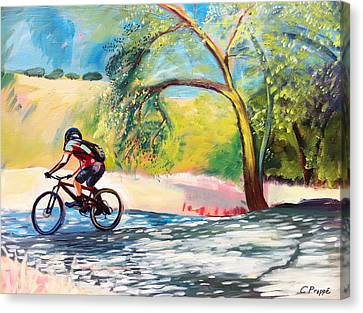 Mt. Bike With Tree Shadows Canvas Print by Colleen Proppe