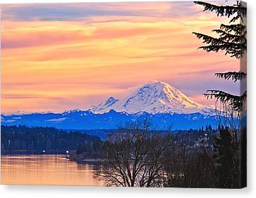 Mt Rainier From Lake Washington Canvas Print by Alvin Kroon