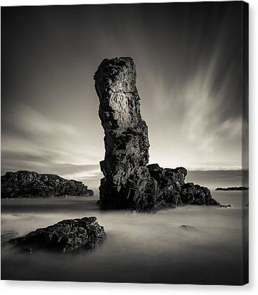 Muchalls Stack Canvas Print by Dave Bowman