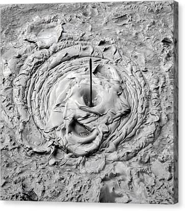 Mud Pool Canvas Print by Nicholas Blackwell