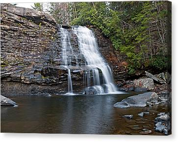 Muddy Creek Falls In Swallow Falls State Park Maryland Canvas Print by Brendan Reals