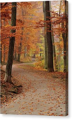 Munich Foliage Canvas Print by Frenzypic By Chris Hoefer
