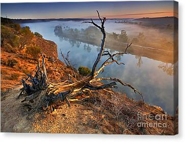 Murray River Dawn Canvas Print by Bill  Robinson