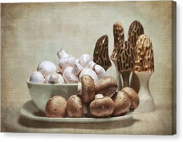 Mushrooms And Carvings Canvas Print by Tom Mc Nemar