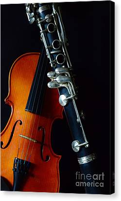 Music - Woodwind And Strings Canvas Print by Paul Ward