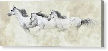 Mustang In Motion Canvas Print by Ron  McGinnis