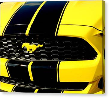 Mustang In Yellow Canvas Print by Louis Meyer
