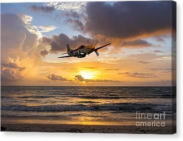 Mustang Sunset Canvas Print by J Biggadike