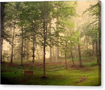 My Backyard Canvas Print by Deborah  Crew-Johnson