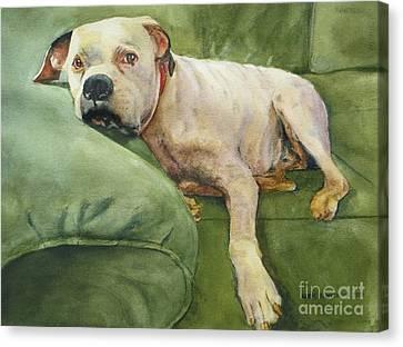 My Comfort Zone Canvas Print by Karol Wyckoff