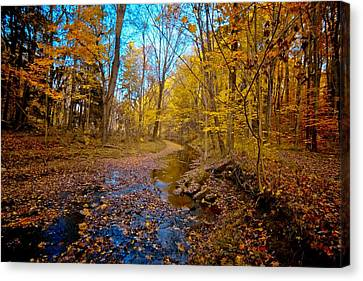 My Morning Walk Canvas Print by Linda Unger