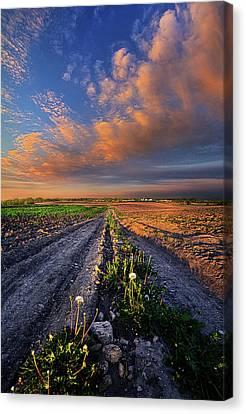 My Way Canvas Print by Phil Koch