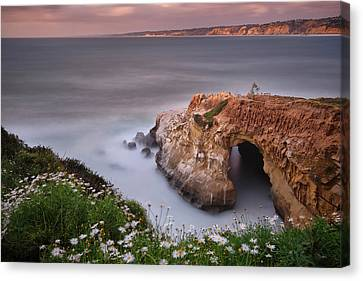 Mystical Cave Canvas Print by Larry Marshall