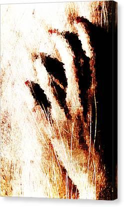 Nails Canvas Print by Andrea Barbieri