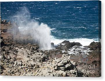 Nakalele Point Canvas Print by Peter French - Printscapes