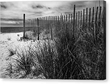 Nantucket Harbor Beach Dunes  Canvas Print by Thomas Schoeller