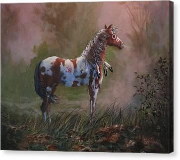 Native American War Pony Canvas Print by Tom Shropshire
