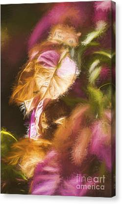 Nature Pastel Artwork Canvas Print by Jorgo Photography - Wall Art Gallery
