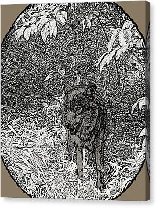Nature Walk Wolf Canvas Print by Debra     Vatalaro