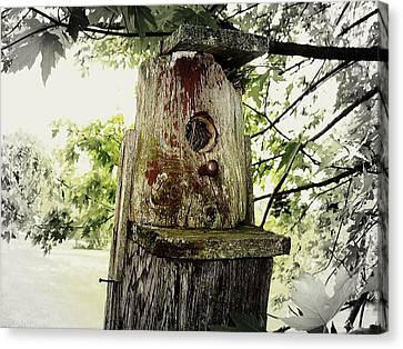 Natures Bird House Canvas Print by Linda Francis