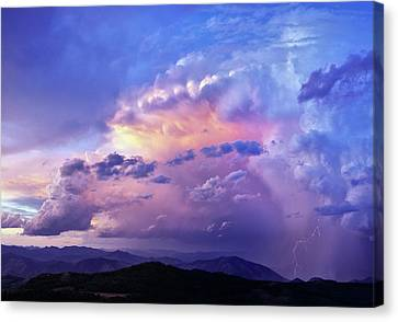 Natures Glory Canvas Print by Leland D Howard