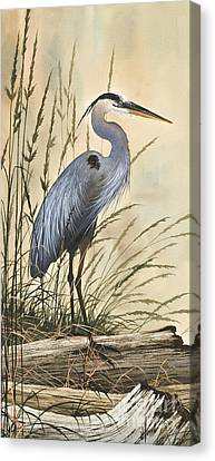 Nature's Harmony Canvas Print by James Williamson