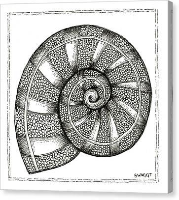Nautilus Canvas Print by Stephanie Troxell