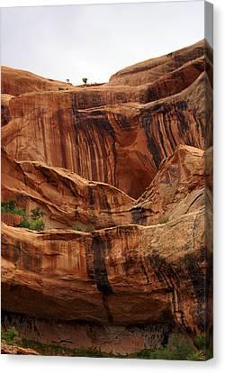 Near Moab 1 Canvas Print by Marty Koch