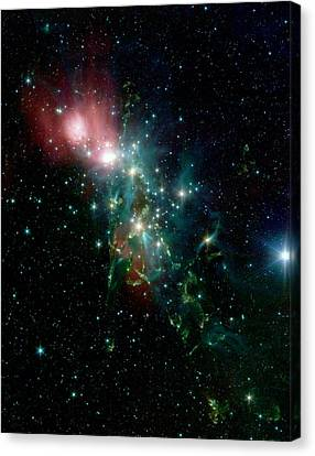 Nebula Ngc 1333 In The Constellation Perseus Canvas Print by American School