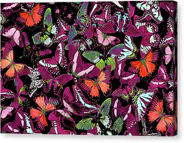 Neon Butterflies Canvas Print by JQ Licensing