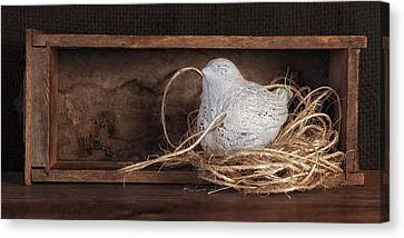 Nesting Bird Still Life II Canvas Print by Tom Mc Nemar