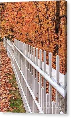 New England White Picket Fence With Fall Foliage Canvas Print by Edward Fielding