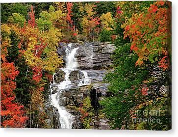 New Hampshire Waterfall Canvas Print by Betty LaRue