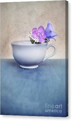 New Life For An Old Coffee Cup Canvas Print by Priska Wettstein