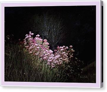 Night Flowers Canvas Print by YoMamaBird Rhonda