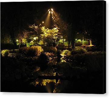 Night Garden Canvas Print by Art Nomad Sandra  Hansen