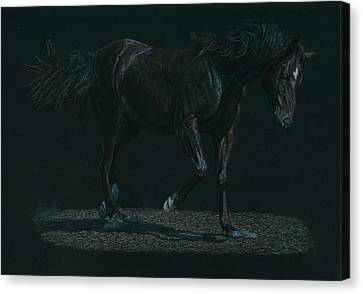 Running Horses Canvas Print featuring the drawing Night Mare by Laura Klassen