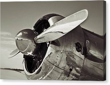 North American Aviation T-6 Texan Plane In Sepia Canvas Print by Tony Grider